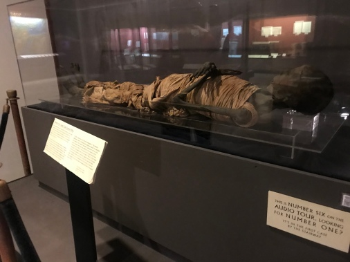 Sorry - (bit graphic) yes a real mummy!