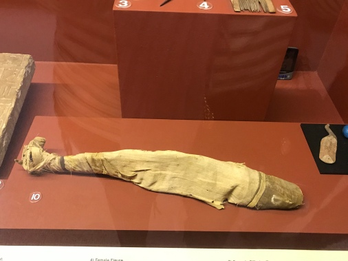 So this is a Nile Catfish - mummified...umm tasty for the after life!
